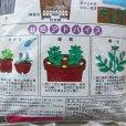 画像3: ハーブの土・培養土【野菜、果樹にもOK】5L (3)